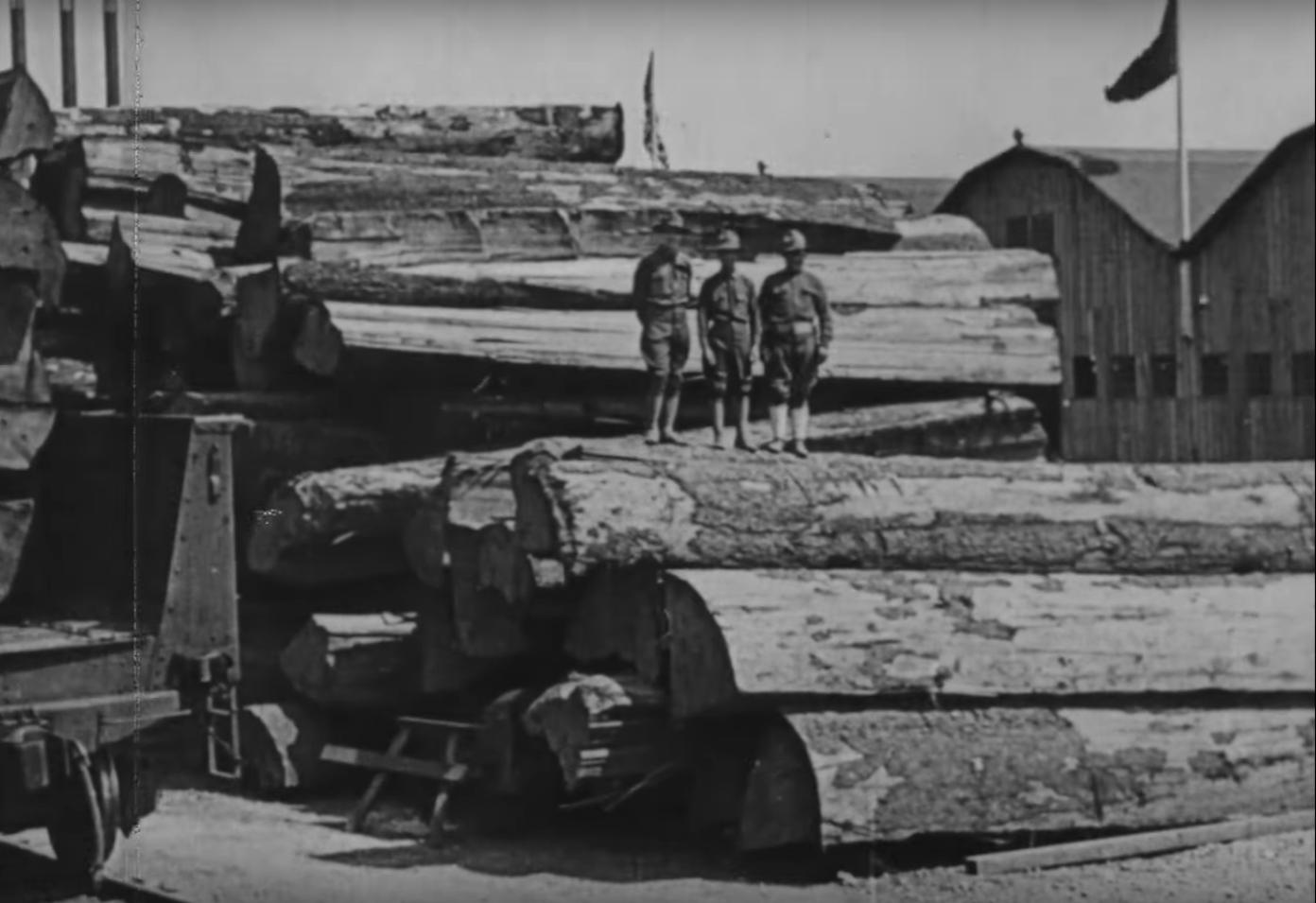 Lumber Production 3