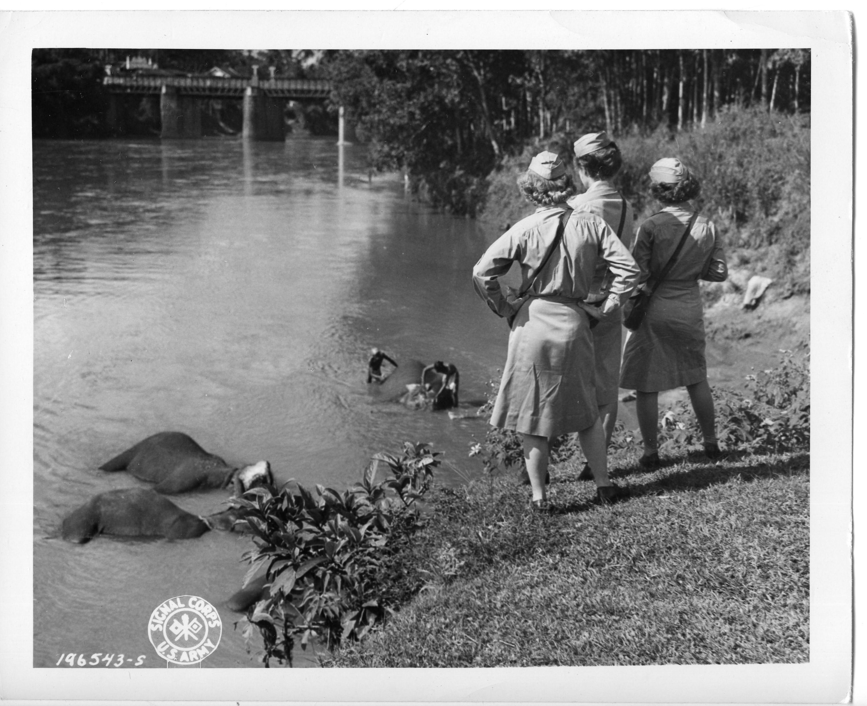 WACs watch natives scrubbing an elephant. Kandy, Ceylon, 1944.